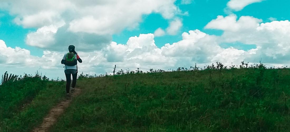 Hiking, Mount Mago, Nature, Cebu Mountains, Mountains
